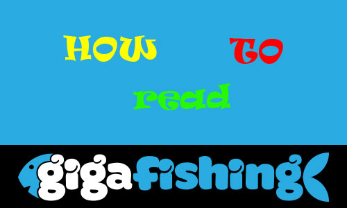 how to read fish finder - best comprehensive guide!, Fish Finder