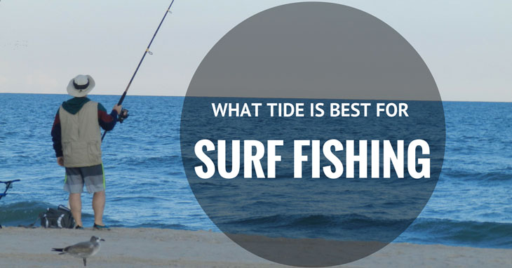 What Tide Is Best For Surf Fishing Giga Fishing