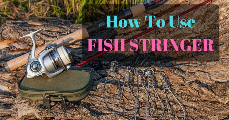 how to use fish stringer 0000